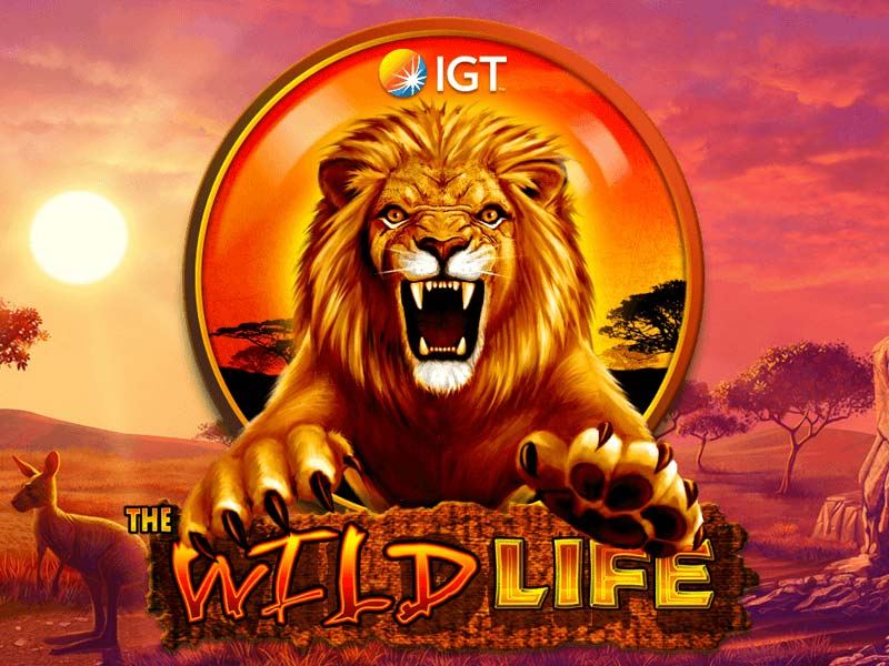 online slot games on in life